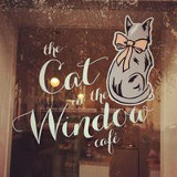 the-cat-in-the-window-aberdeen