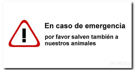 aviso-emergencia-salvar-animales-hogar