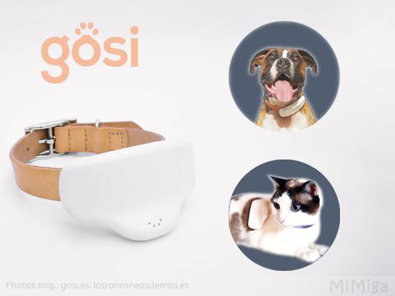 gosi-gps-para-mascotas-perro-gato