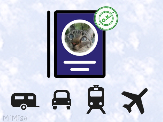 Travelling with cat - requirements