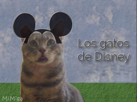 60 años los dueños secretos de Disneyland