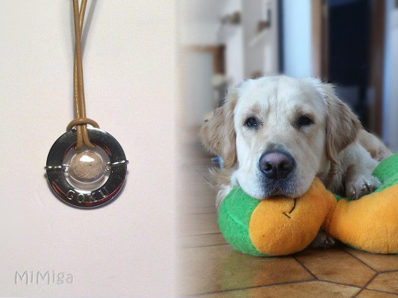 artistic-jewel-mi-miga-necklace-leather-steel-washer-engraved-name-glass-pearl-  animal-pet-hair-dog-goku