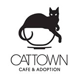 cat-town-oakland-logo