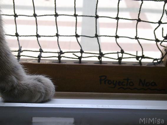 ventana-protegida-gato-proyecto-noa-sistema-quita-y-pon
