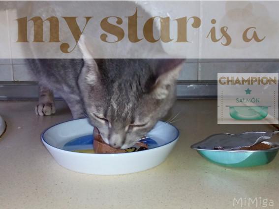 Mi campeón Leo testando el nuevo My Star