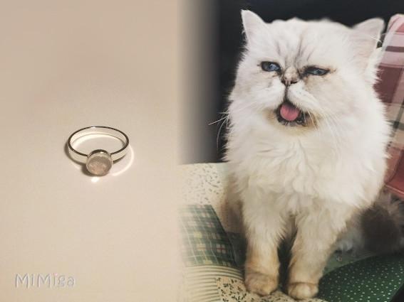 joya-artistica-recuerdo-con-pelo-animal-mi-miga-anillo-plata-ley-cabuchon-cristal-lupa-gato-luna