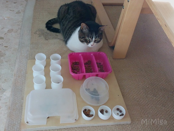 tablero-juego-alimentacion-diy-gatos-mi-miga