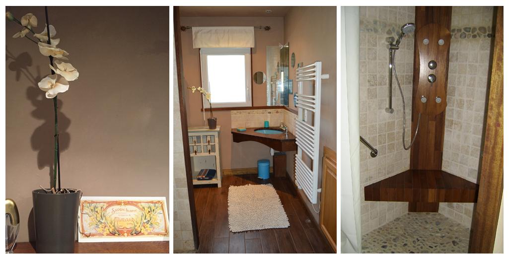 Salle de bain avec douche aménagée pour les handicapés du gite Pomme d'Or