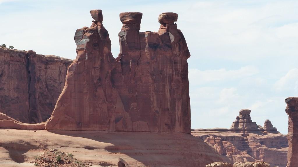 3 commères en discussion depuis des millions d'années