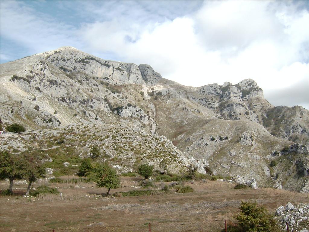 Aurunci