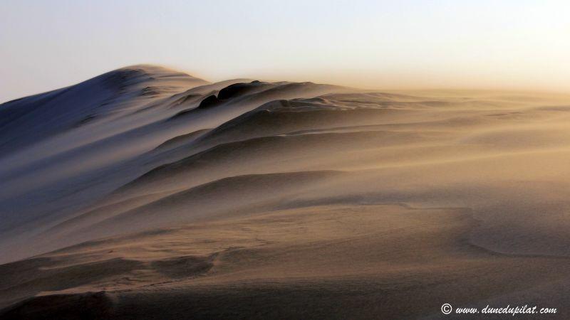 Le sommet de la dune balayé par le vent