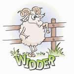 Widder - klick mich