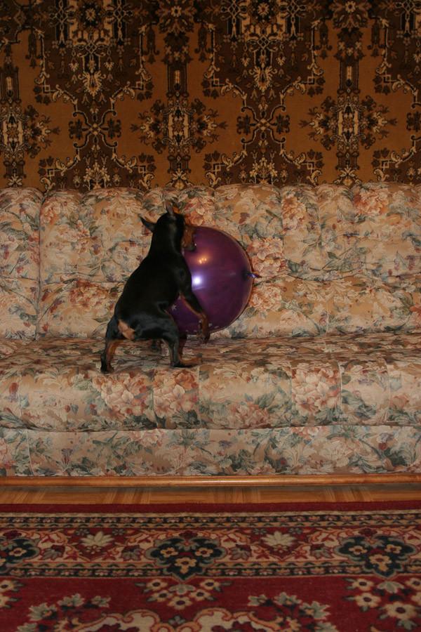 игрища с шаром