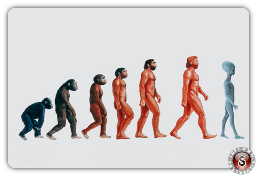 New evolutionary theory by Silverland