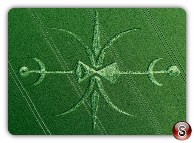 Crop circles Stoford, Wiltshire UK 2015