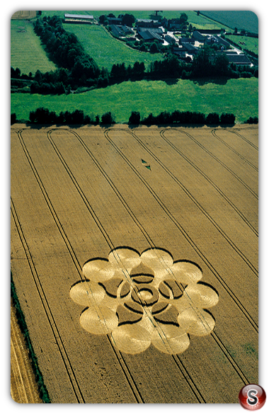 Crop circles - Martinsell Wiltshire 2000