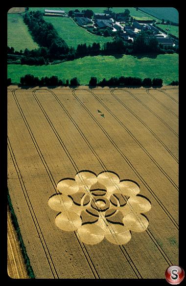 Crop circles - Martinsell Wiltshire 2000