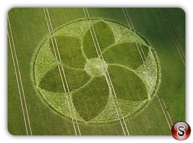 Crop circles - Manton Wiltshire 2007