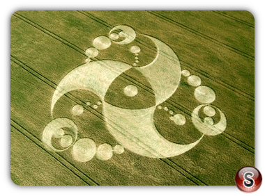 Crop circles - Martinsell Hill, Wiltshire 2008