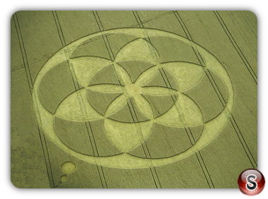 Crop circles - Froxfield, Wiltshire 1994