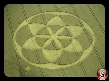 Crop circles - Froxfield Wiltshire 1994