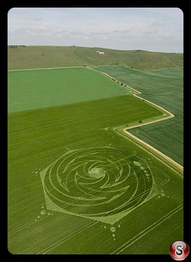 Crop circles - Milk Hill Wiltshire 2009