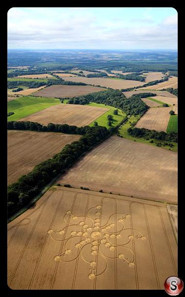 Crop circles - Tidcombe Wiltshire 2009