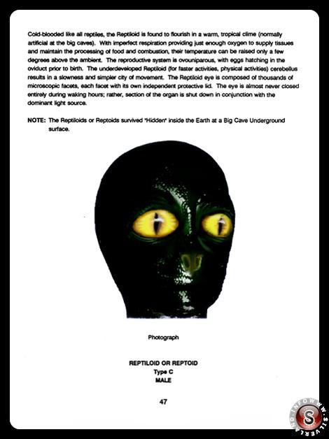 Reptiloid type C - Blue Planet Project - Rielaborazione grafica Silverland