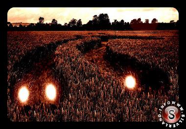 Crop circles e sfere di luce