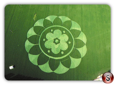 Crop circles Fangshan District Bejing 2015