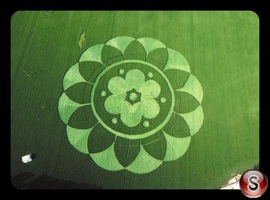 Crop circles - Fangshan District Bejing 2015