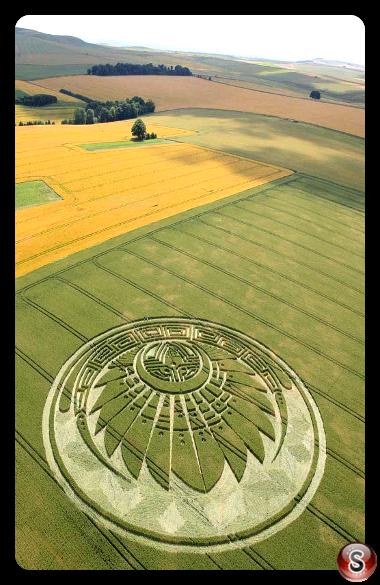 Crop circles - Silbury Hill, nr. Avebury, Wiltshire 2009