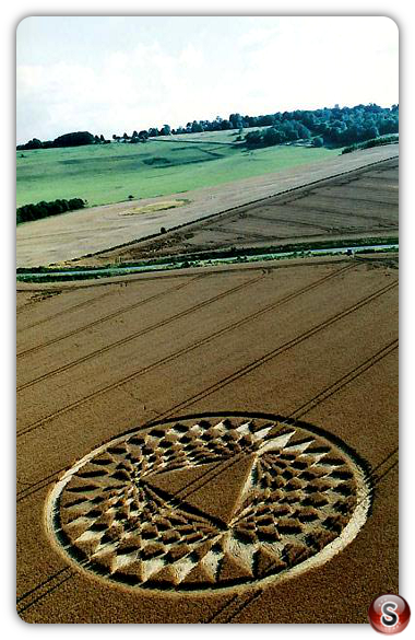 Crop circles - Aldbourne B, Wiltshire 2005