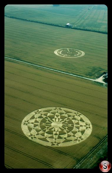 Crop circles - Beckampton 2001