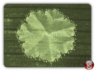 Crop circles - East Field, Alton Barnes, Wiltshire 1998