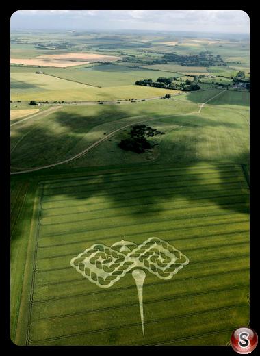 Crop circles - West Down (nr Beckhampton) 2009