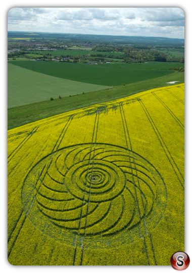 Crop circles - Roundway Hill Wiltshire 2009