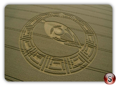 Crop circles Cooks Plantation, nr Beckhampton, Wiltshire UK. 2013
