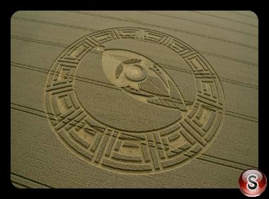 Crop circles Cooks Plantation nr Beckhampton Wiltshire UK 2013