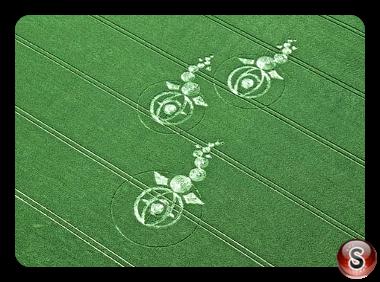Crop circles - Woodborough Hill Wiltshire 2012
