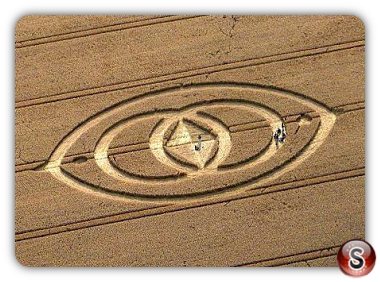 Crop circles - Morgan Hill nr Devizes Wiltshire 2008