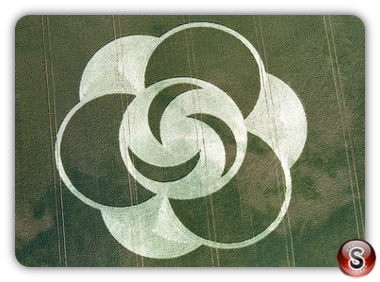 Crop circles - Little Bury Green, Essex 1996