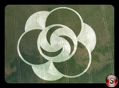 Crop circles - Little Bury Green Essex 1996