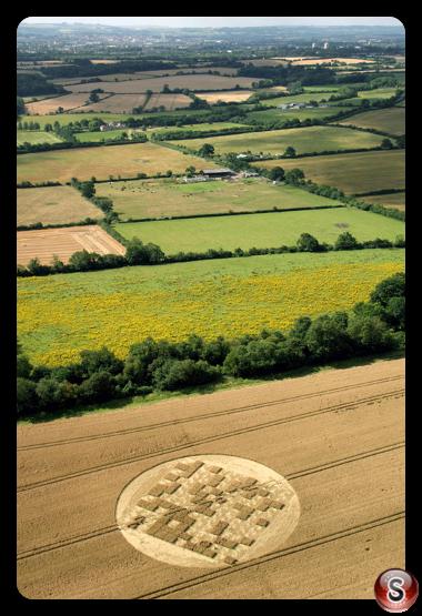 Crop circles - Jubilee Copse nr Hannington, Wiltshire 2012