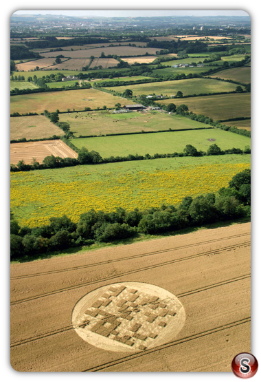 Crop circles - Jubilee Copse nr Hannington Wiltshire 2012