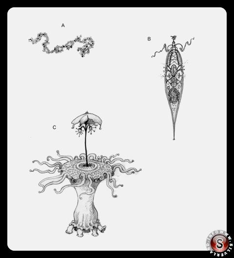 Illustrazione dei livelli di complessità. A) Una semplice molecola replicante. B) Entità simile a una cella. C) Un alieno. Helen Cooper