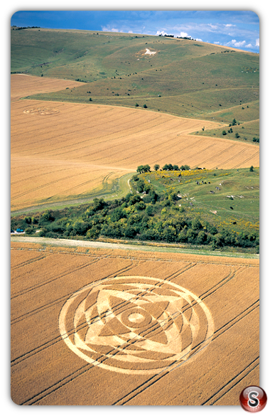 Crop circles - Alton Priors, Wiltshire 2001