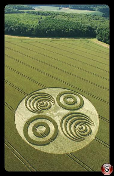 Crop circles - Savernake Forest Wiltshire 2006