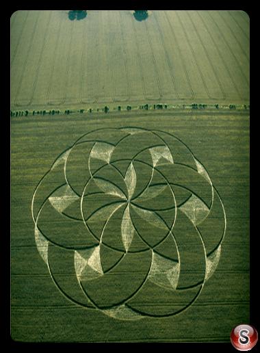 Crop circles - Etchilhampton, Wiltshire 2002