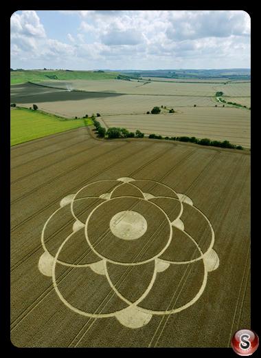 Crop circles Winterbourne Bassett(2) - nr Avebury, Wiltshire 2009